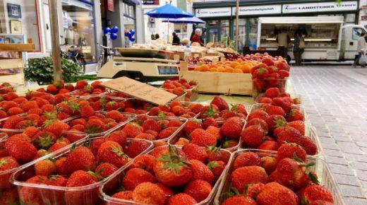 insBesondere Markt: Erdbeeren – ganz schön frische Früchtchen