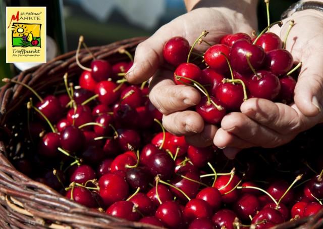 insBesondere Markt: Die Kirschen sind reif