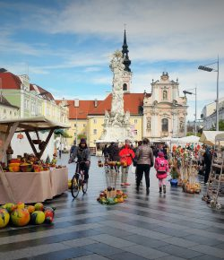 Kunsthandwerksmarkt am Rathausplatz in St. Pölten